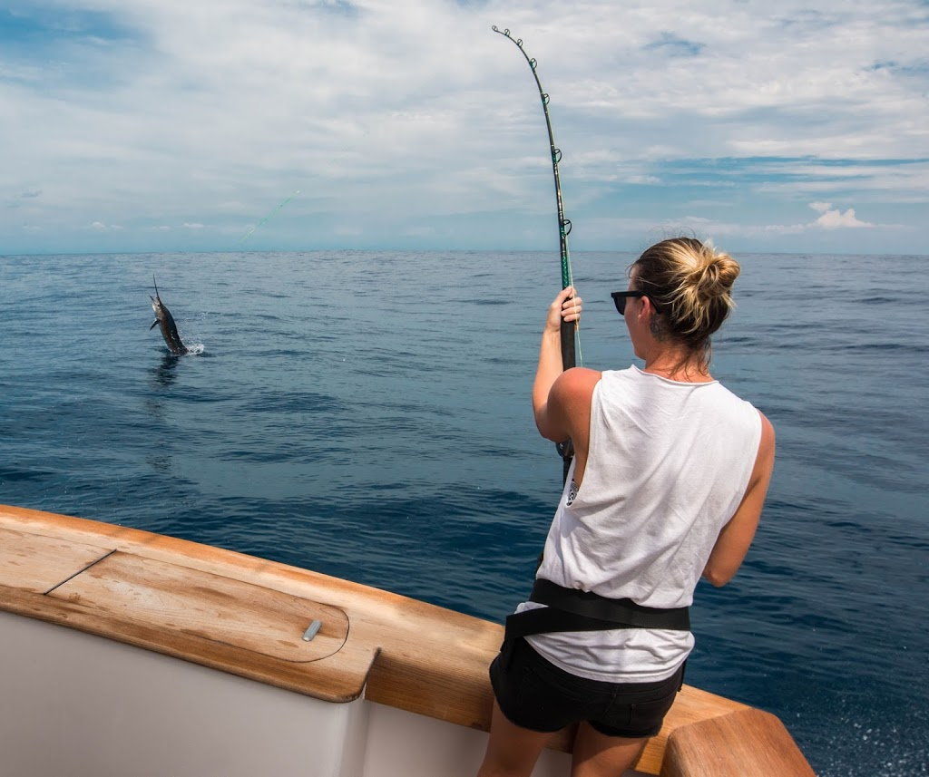 Allure Ii Back In The Water Catching Fish Sailfish Oasis